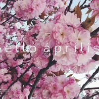 HELLÓ ÁPRILIS! (Dear April!)