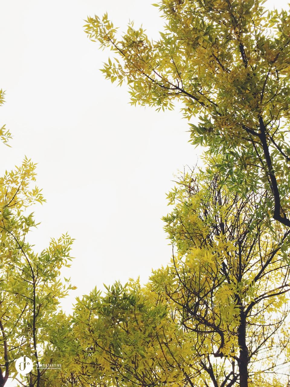 drkuktartweekendinspiration0029b.jpg