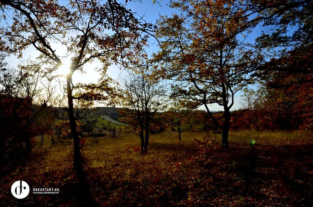drkuktartweekendinspiration0036013.jpg
