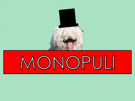 monopuli.png