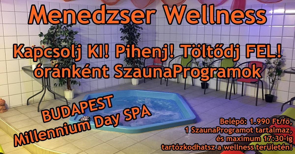 menedzser_wellness.JPG