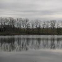 Tükör-kép