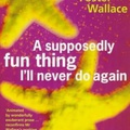 David Foster Wallace: A Supposedly Fun Thing I'll Never Do Again