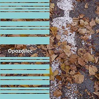 Dimitri Verhulst: Opozdilec - The Latecomer