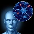 Tudományos rovat: Nem kell többé szteroidot szúrni, mert itt a transzkraniális egyenáram stimuláció