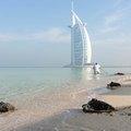 Teknősetetéssel ünnepelnek Dubajban