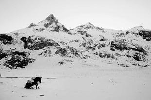 """Díjnyertes tájképek a belga fotóművésztől: """"Fehér Világ"""""""
