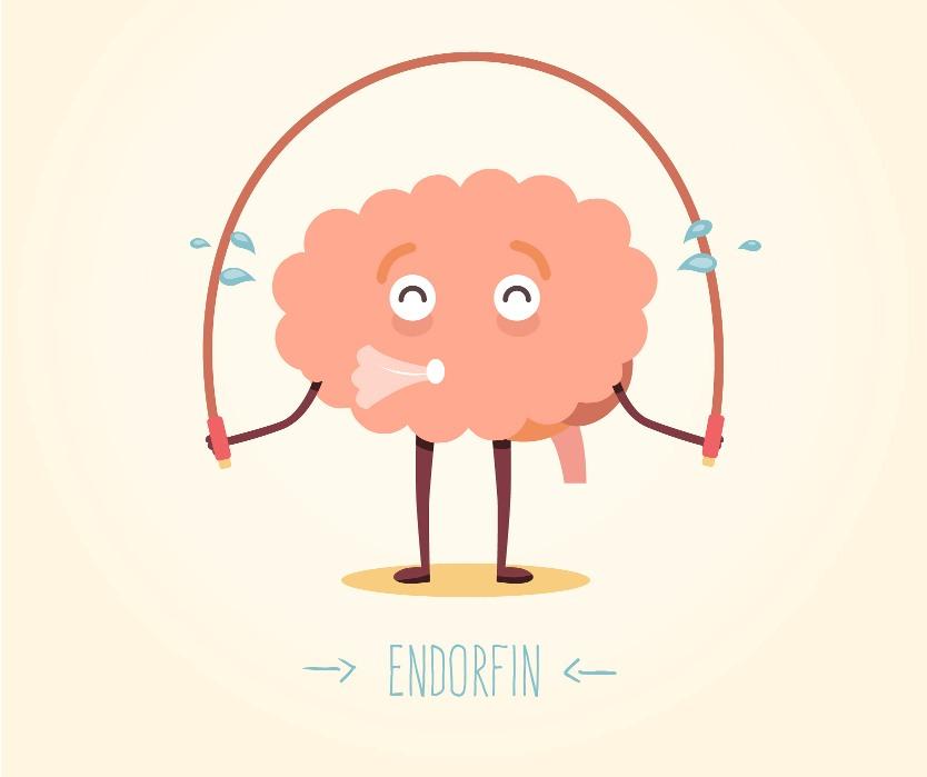 endorfin.jpg