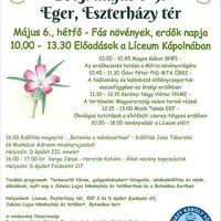 Botanika Hete 2013. május 6-9.