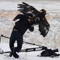 20 fotós, aki minden extrém körülményt bevállal egy jó képért