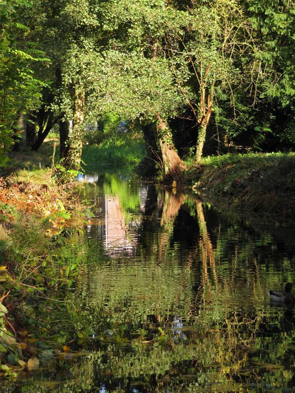http://m.blog.hu/ei/eindhovenielet/image/Eindhoven%20%C5%91sz%20018.jpg