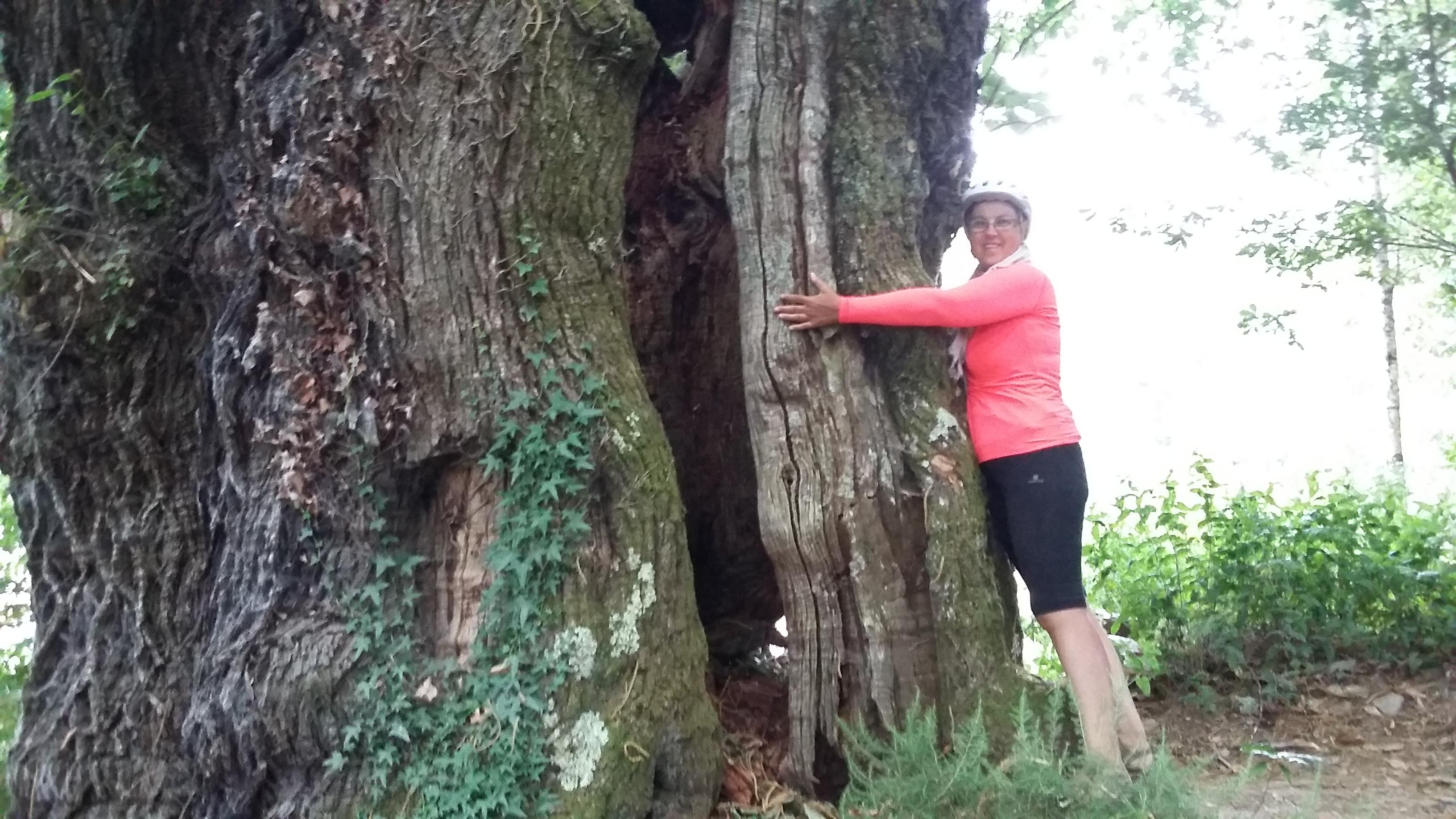 A Balsa El Beso albergue. 800 éves fa.