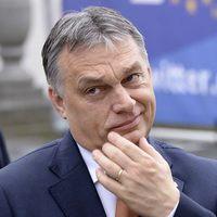 Elegem van Orbán terroristáiból