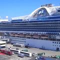 Mit ne tegyen, ha cruise-ra megy?
