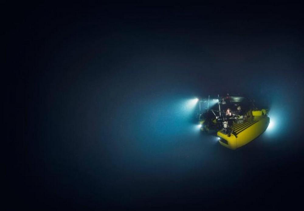 tengeralattjaro.jpg