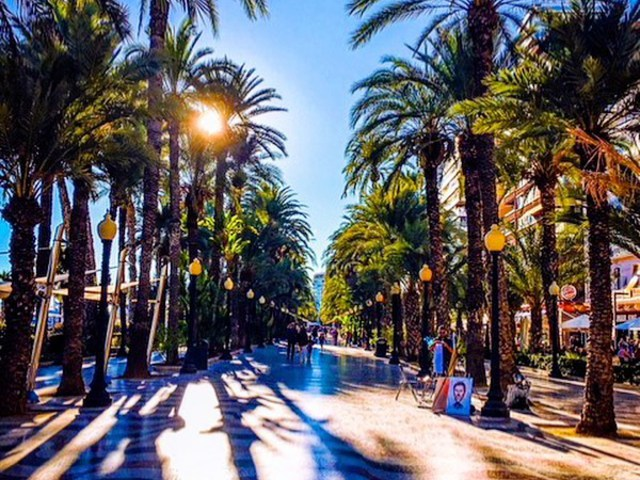 #ciudad #spain #bluesky #clouds #palmtrees mtrees #travelblogger #travelaroundworld #travelwithme #photography #lovecolours #colouryourlife #daretolive ® 2013 Szilvia Schäffer Photography Registered Trademark