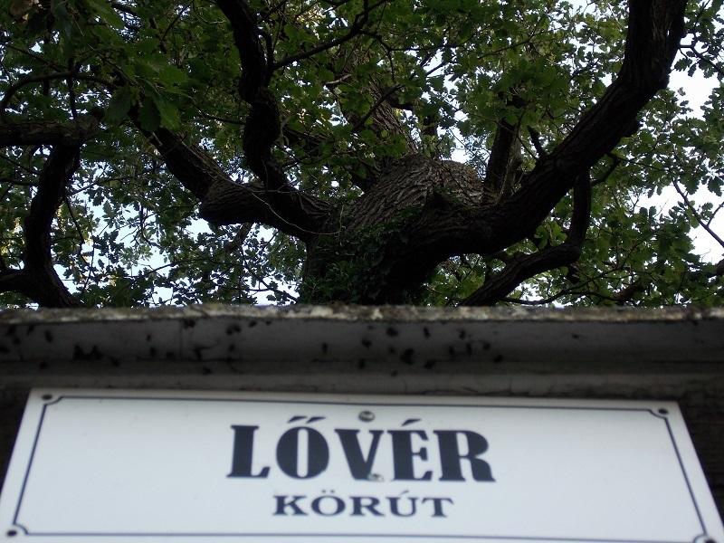 lover_1.JPG