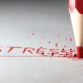 Legyen stresszmentes a vizsgaidőszakod!