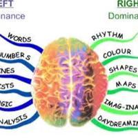 Hogyan hangoljuk össze a két agyféltekénket?