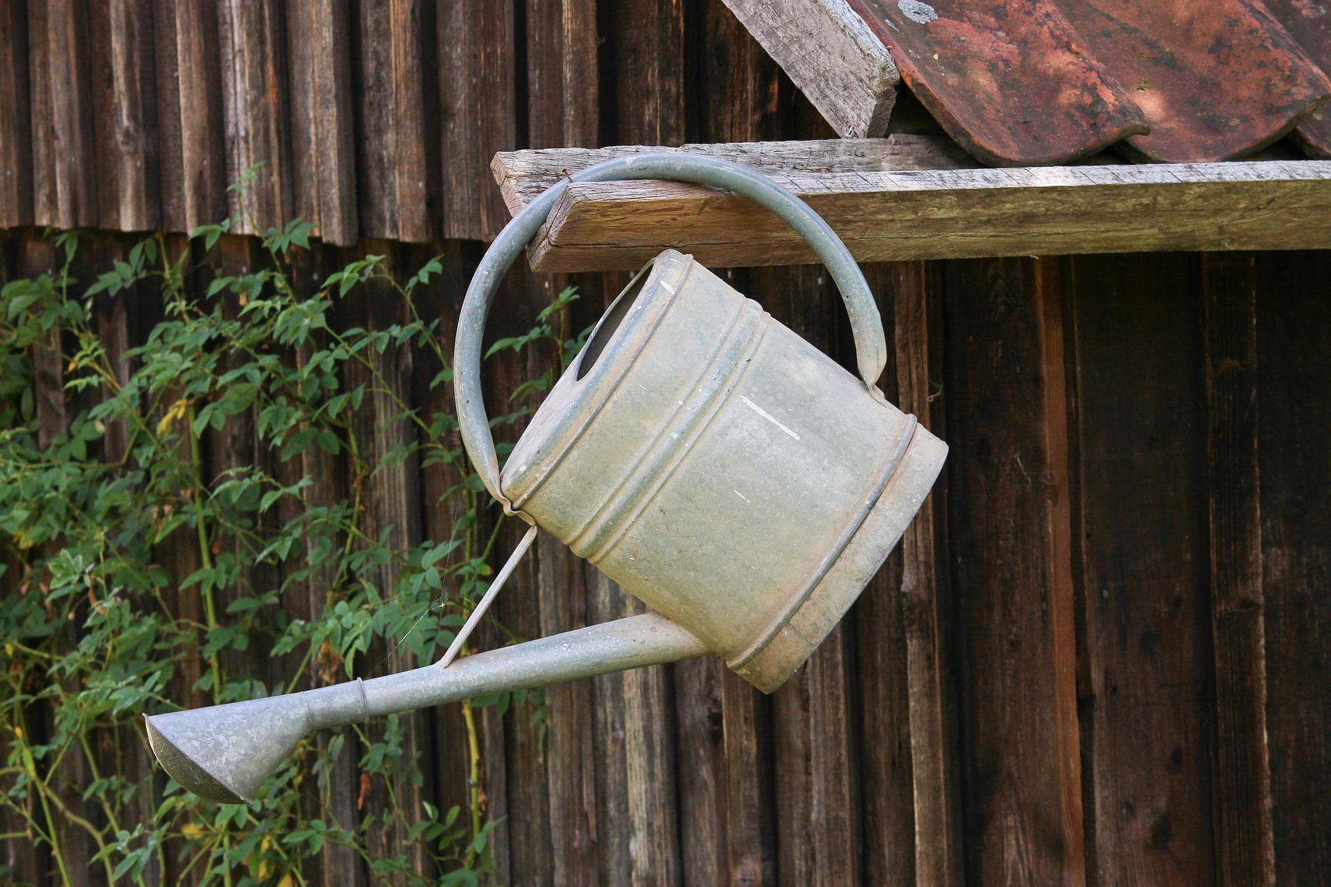 watering-can-3603799_1920.jpg