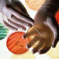 Felelős antibiotikum rendelés a felső légúti fertőzések kezelésében
