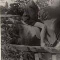 Egy magyar lovas, kinek védjegye a sokoldalúság - Hargitai János