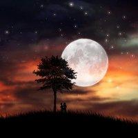 A csillagok hallgatnak