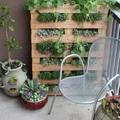 Ha kert nincs, de van terasz: falatnyi természet a város felett