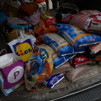 Egy kiló táp- egy jó tett csoport tagjai jöttek el hozzánk--- Csodálatos adomány