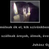 Elment Gyula, az istállóőrünk. :'(