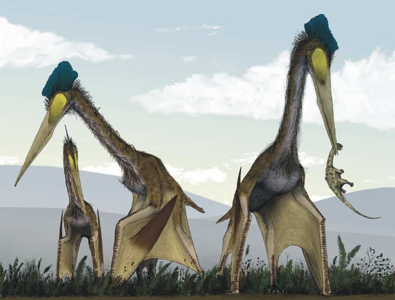 life_restoration_of_a_group_of_giant_azhdarchids_quetzalcoatlus_northropi_foraging_on_a_cretaceous_fern_prairie.png