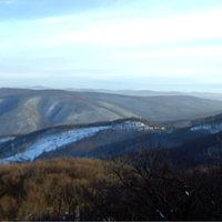 Rezső-kilátó (Visegrádi-hegység)