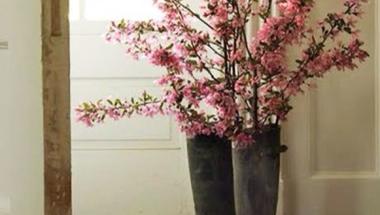 Tavaszi inspirációk