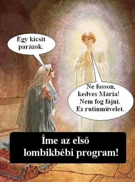 elso_lombikbebi.jpg