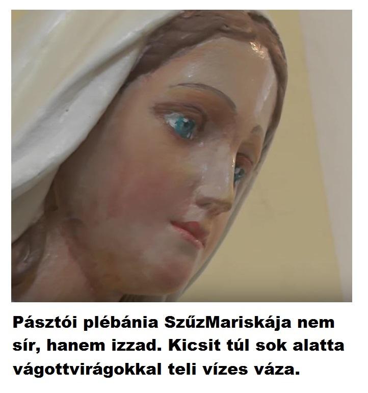 pasztoi_szuzmaris_izzad.JPG