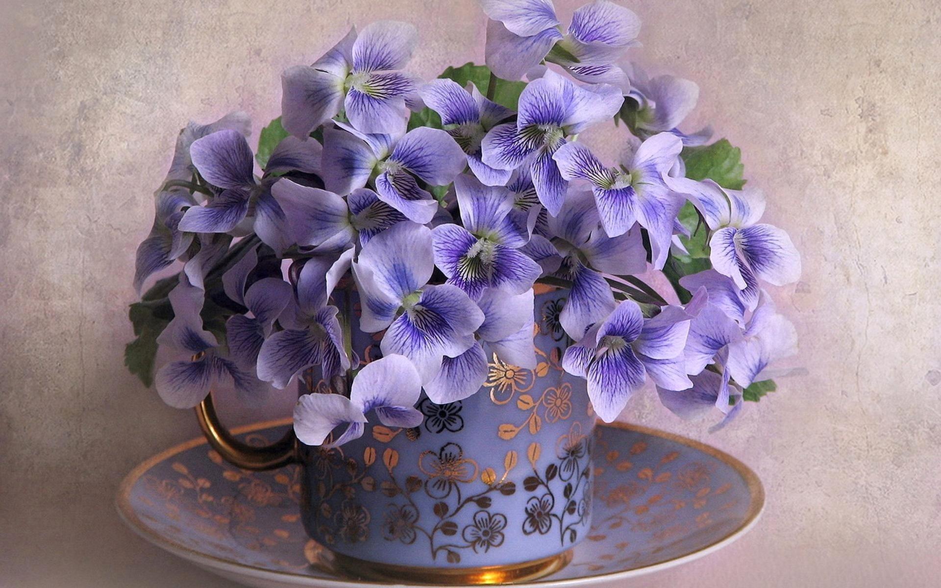 flower-virag2-9426997713.jpg