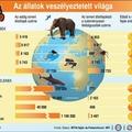 Infografikák az oktatásban