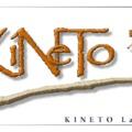 Újfajta daganatellenes terápiás megoldásokat kutat a KINETO Lab Kft.