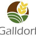 GMO-mentes takarmány szójabab termesztési technológiáját fejlesztik
