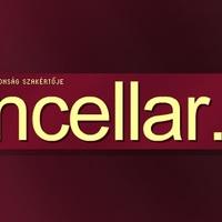 Szolgáltató központját fejlesztette a Kancellár.hu