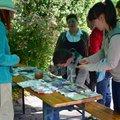 XXVI. Sérült Gyermekek Napja az Állatkertben -- Minden korábbinál többen vettek részt a rendezvényen