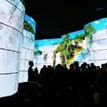 LG OLED tévékből épített kanyon kápráztatta el a CES résztve-vőit