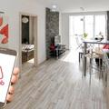 Hegedüs Sándor: Veszélyben a szabálytalanul működő vaterázók és airbnb-zők