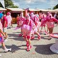 Látogatói rekord és több ezer rózsaszínű futó a 8. Villányi Rozé Fesztiválon