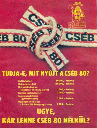 1982_cseb_preview.jpg