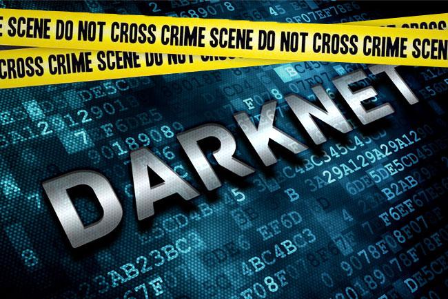darknet01.jpg