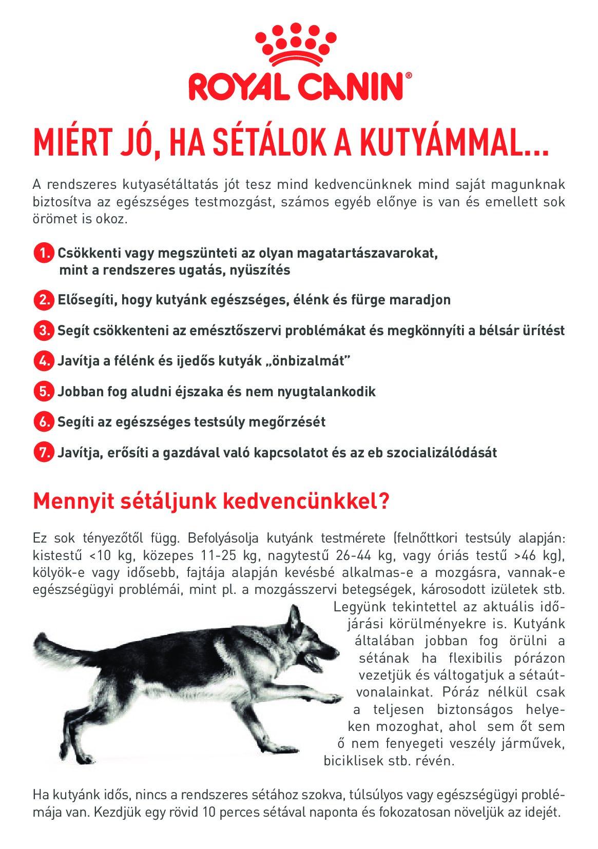 kutyas_t_ltat_si_aj_nl_sok_000.jpg