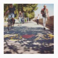 Közlekedj zölden! – Európai Mobilitási Hét 2017