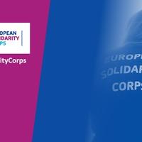 Egyéves az Európai Szolidaritási Testület