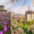 Virágzással köszönt be a tavasz Európába